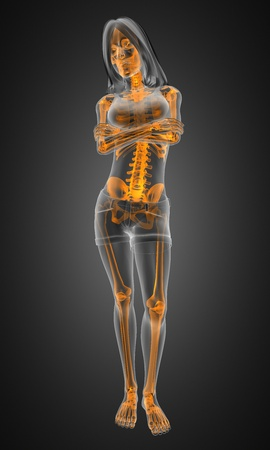 standing woman radiography made in 3D Stock Photo - 12601786