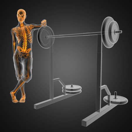 human radiography scan in gym room Stock Photo - 12601852