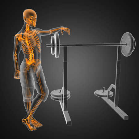 human radiography scan in gym room Stock Photo - 12601868