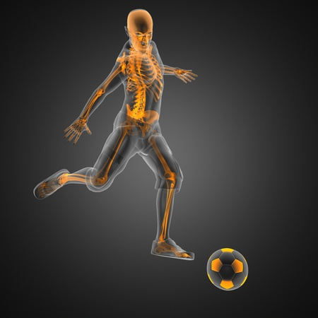 esqueleto: jugador de f�tbol juego hecho en 3D