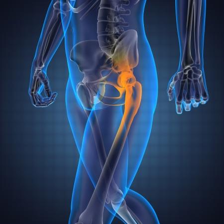 osteoporosis: La radiograf�a de exploraci�n humana hecha en 3D Foto de archivo