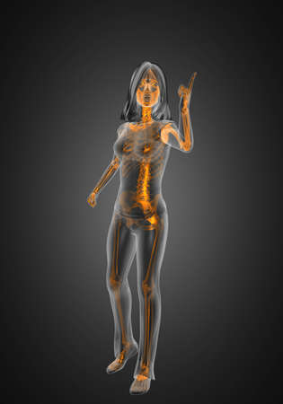 cute woman radiography made in 3D graphics photo