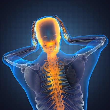 human radiography scan made in 3D Stock Photo - 12602182