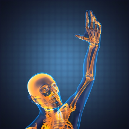 human radiography scan made in 3D Stock Photo - 12609872