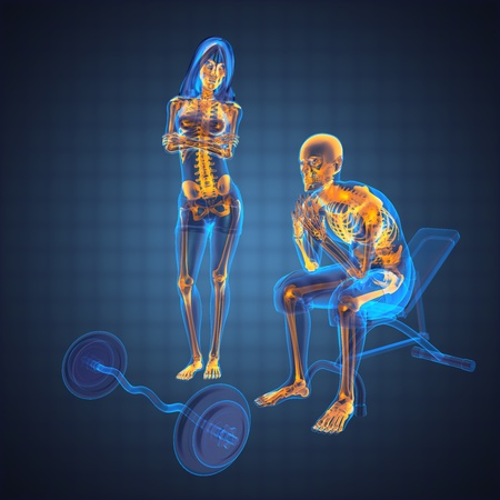 skeletal muscle: human radiography scan in gym room made in 3D Stock Photo