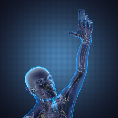 human radiography scan made in 3D Stock Photo - 12870775