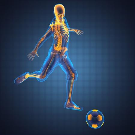 skelett mensch: Fu�ball-Spiel-Player in 3D gemacht Lizenzfreie Bilder
