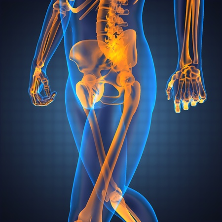 human radiography scan made in 3D Stock Photo - 12870901