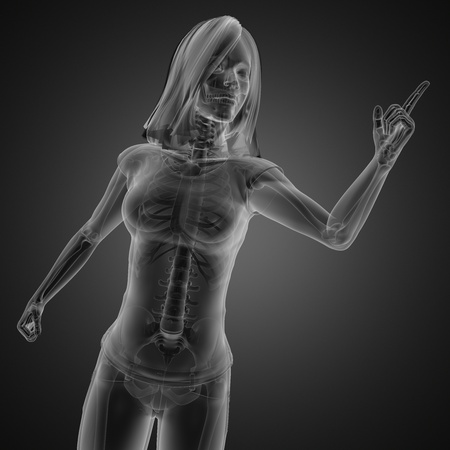 cute woman radiography made in 3D graphics Stock Photo - 13035935
