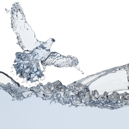 water wings: Pigeon of water made in 3D graphics