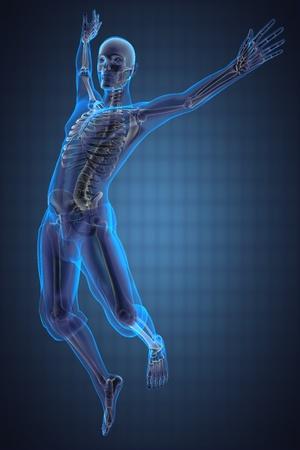 human skeleton: saltar la radiograf�a hecha por el hombre en 3D
