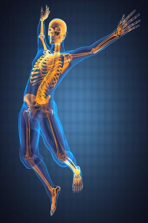 squelette: sauter radiographie homme fait en 3D Banque d'images