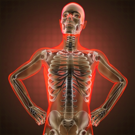 human radiography scan made in 3D