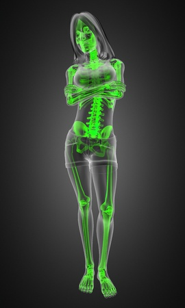 standing woman radiography made in 3D photo