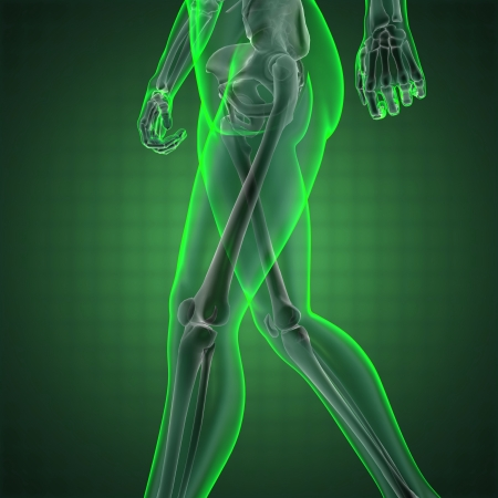 human radiography scan made in 3D Stock Photo - 13991649