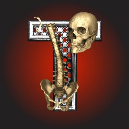 Metal figure with skeleton Stock Vector - 14483134