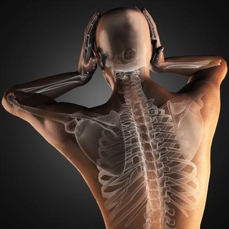 partes del cuerpo humano: scan radiografía humano en 3D