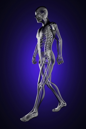 to attend: walking man radiography made in 3D Stock Photo