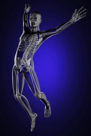 partes del cuerpo humano: saltar radiografía hecha por el hombre en 3D Foto de archivo