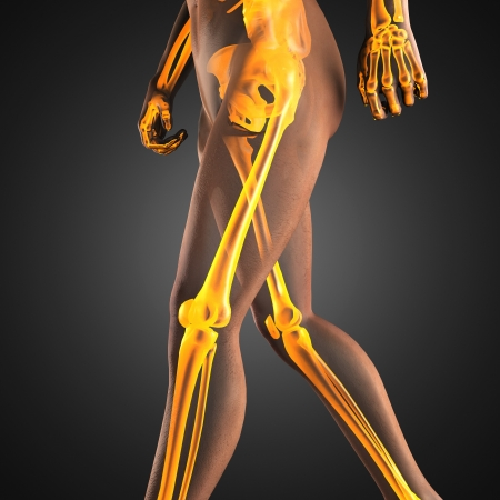 human radiography scan made in 3D photo