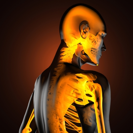 human radiography scan made in 3D Stock Photo - 16844987