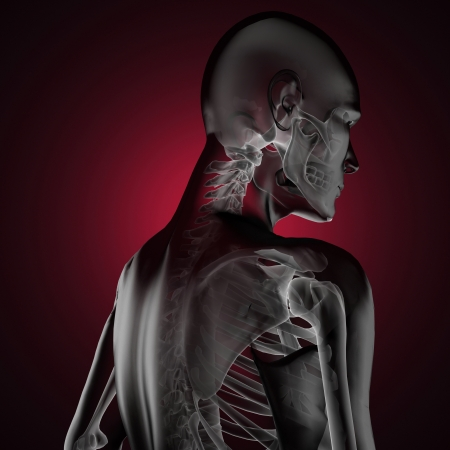 human radiography scan made in 3D Stock Photo - 16989666