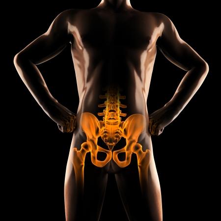 human radiography scan on black Stock Photo - 18159820