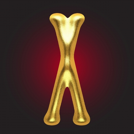golden figure Vector