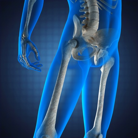 human radiography scan  on blue background photo