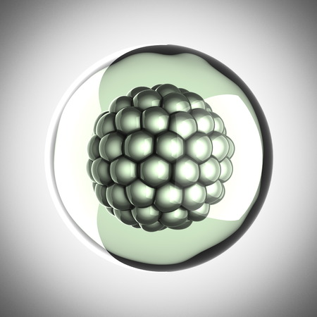 zygocyte: A single micro cell scientific illustration
