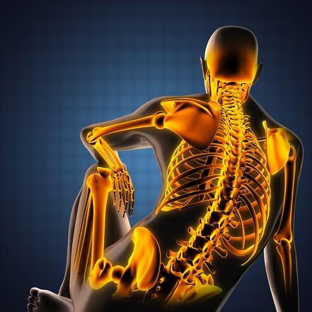 human skeleton: exploraci�n radiograf�a humana con huesos brillantes Foto de archivo
