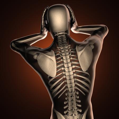 partes del cuerpo humano: exploración radiografía humana con huesos Foto de archivo