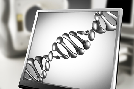 thymine: DNA model on monitor in laboratory