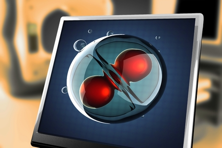 zygote: A micro cell division process illustration at monitor Stock Photo
