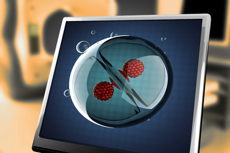 zygocyte: A micro cell division process illustration at monitor Stock Photo