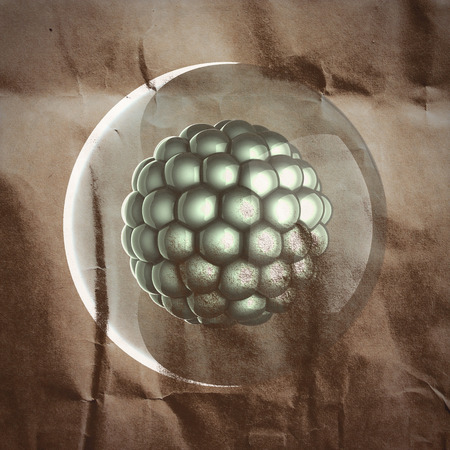 zygocyte: A single micro cell scientific illustration painted on paper