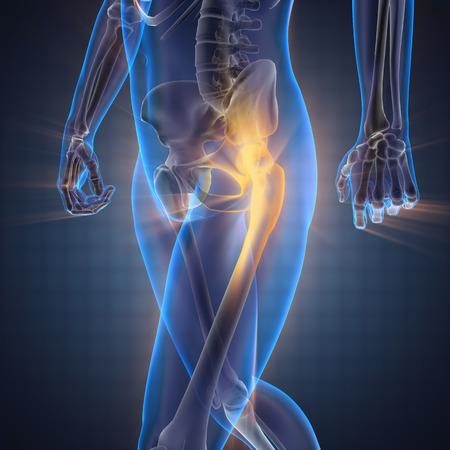 corpo umano: ossa umane immagine scansione radiografia Archivio Fotografico
