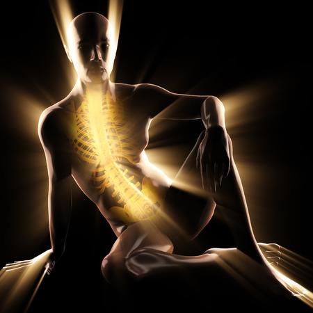 huesos humanos: huesos humanos imagen escaneada radiografía