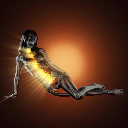 adult bones: woman bones radiography scan image