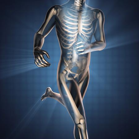 人間の骨撮影スキャン画像