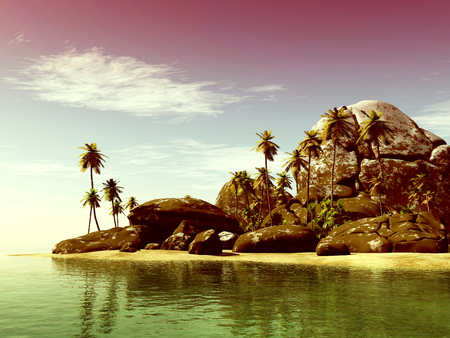 ladigue: toned beach seascape view with a big stones and palmtree