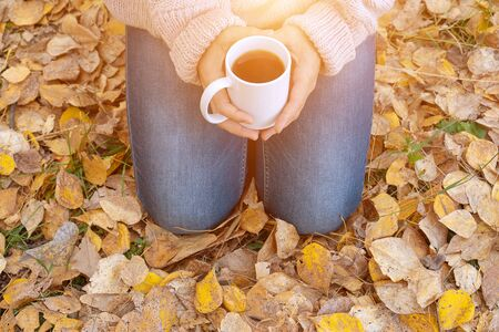 Young woman holding mug of hot tea in a hand in the autumn forest. The sun is shining. Toned. 免版税图像