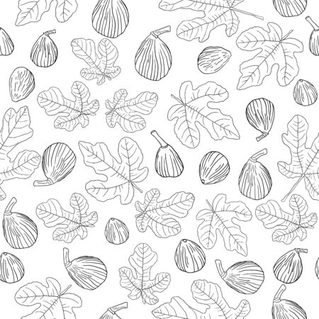 Fig tree leaves and fruits line art vector isolated seamless pattern