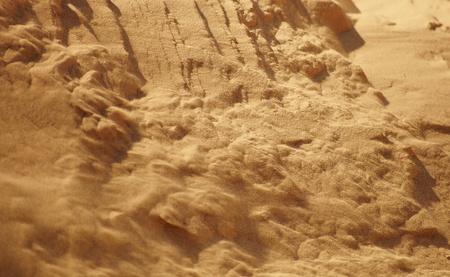 suelo arenoso: La arena es un verano en el bosque de pinos Buenos días