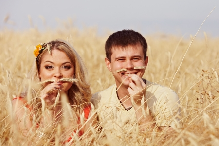 Pair of ears with a mustache in a wheat field