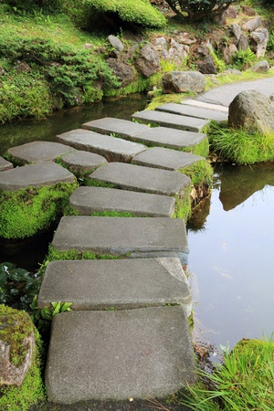Mossy stepping stones photo