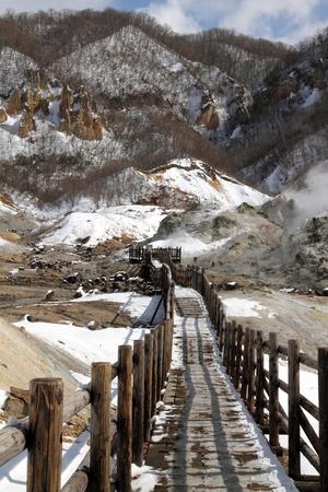 Wooden trail into wilderness