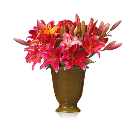 arrangement: lily bouquet isolated on white background