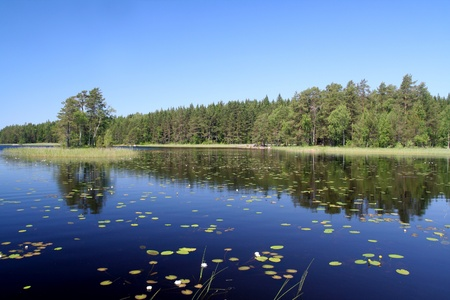 Finnish landscape in summer photo
