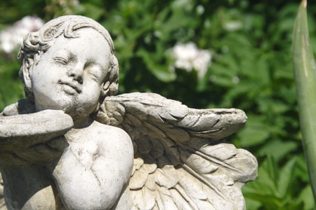 Garden angel  photo